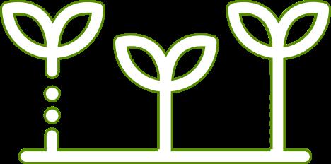 treesicon